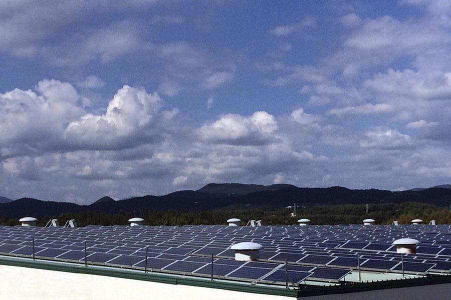 Gaener Energía Renovable